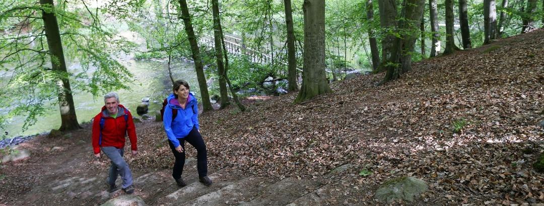 Steile Hänge im Warnow-Durchbruchstal