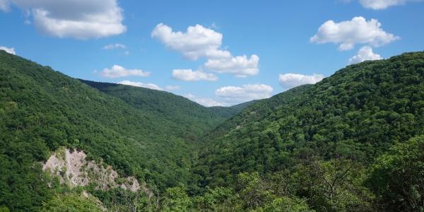 The view over Szent László Valley