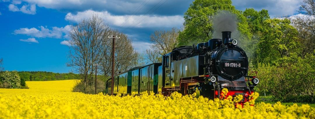 """Die Schmalspurbahn """"Rasender Roland"""" fährt täglich von Lauterbach bis nach Gören"""
