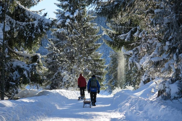 Weg zur Frasdorfer Hütte
