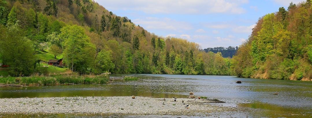 Bei der Tössegg mündet die Töss in den Rhein.