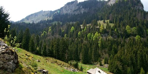 Breccalandschaft mit Alphütte.