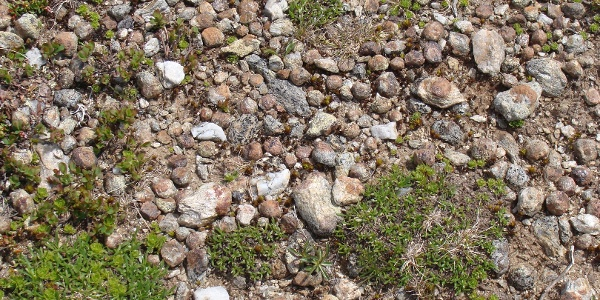 Granatsteine entlang des Weges.