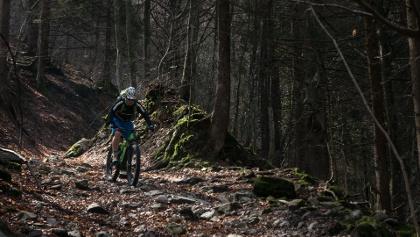 The descent from Malga Grassi to Campi