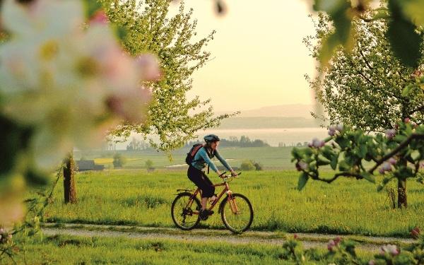 Zur Blütenzeit durch Thurgau