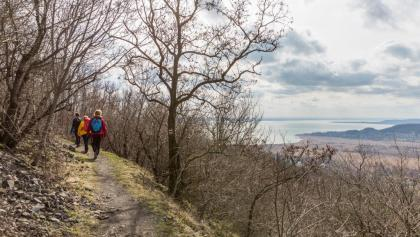 Panoramapfad am nordwestlichen Hang von Badacsony