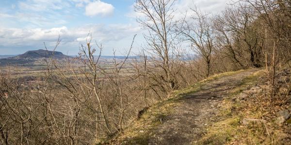 Túraösvény, háttérben a Szent György-hegy