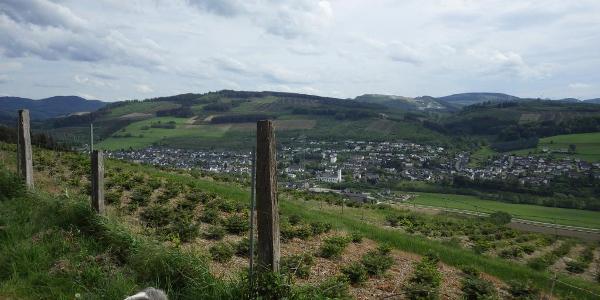Von Höhenweg ins Ruhrtal im Mai.