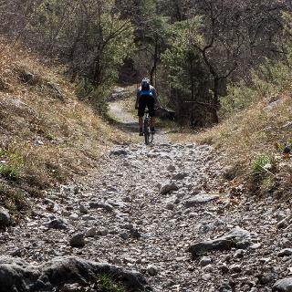 Der Weg zum Cavedine See