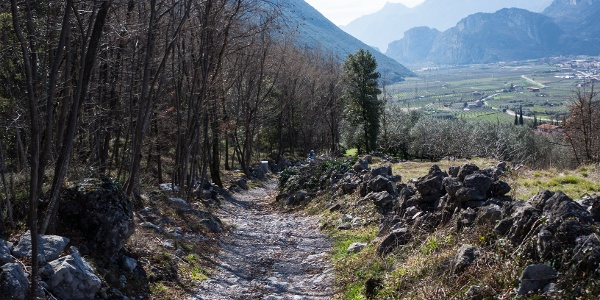 The last part of the descent overlooking the lower Sarca valley