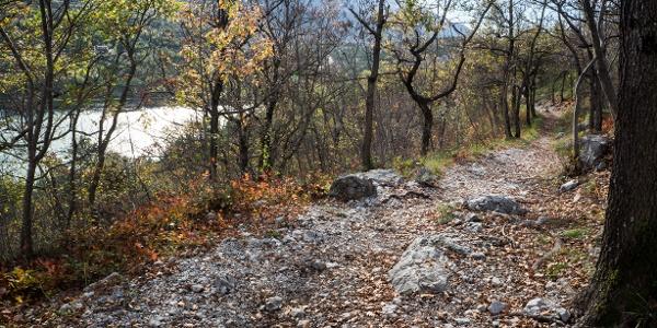 Parte del sentiero di discesa, in veste autunnale, col lago sullo sfondo