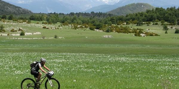 Du plat ! La Palud, un plateau herbeux entre Ubraye et La Sagne