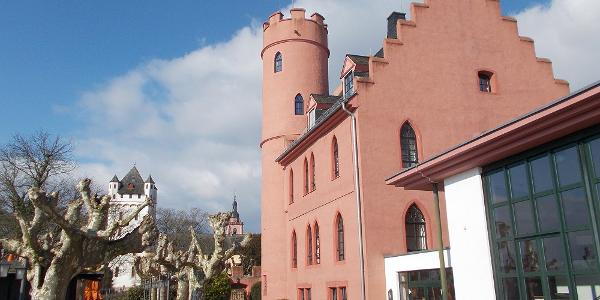 Burg Crass (vorn) und Kurfürstliche Burg (hinten links) in Eltville