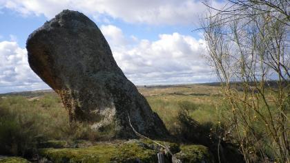 Sandsteinfelsen zwischen Ginster und Korkeichen