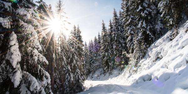 Winterwanderweg zum Kropf