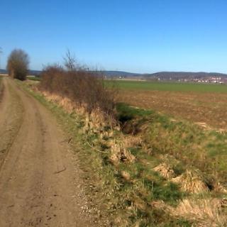 Radweg Pattensen und Umgebung