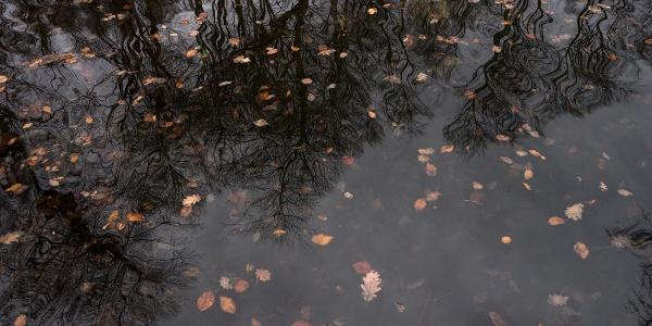 Voda siedmych prameňov sa zbiera v kamennom bazéne