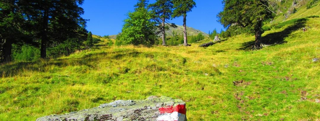 Idyllische Wanderung Richtung Vorwitzsattel