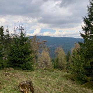 Blick auf den Feltberg