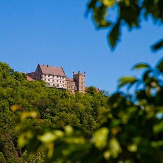 Blick auf Schloss Weitenburg aus dem Neckartal von Süden