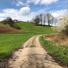 Picture of Hiking Trail: Henschtal - Eichhörnchenweg im Hodenbachtal • Palatine Uplands and Donnersberg (17.04.2018 09:55:09 #3)