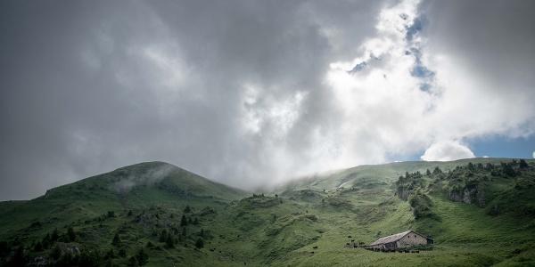 Alpine pasture around Champéry