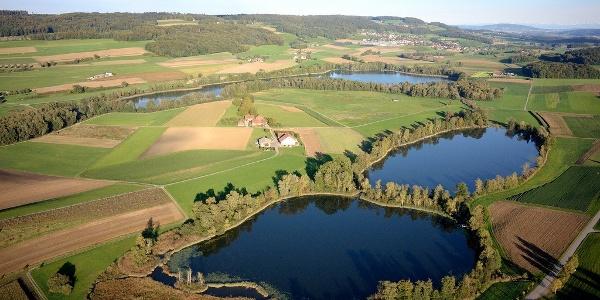 Seelandschaft von Hüttwiler-, Nussbaumer und Hasensee