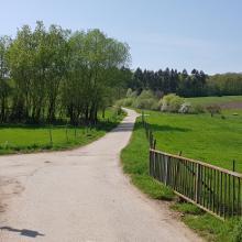 Weg am Rastplatz bei Krettnach