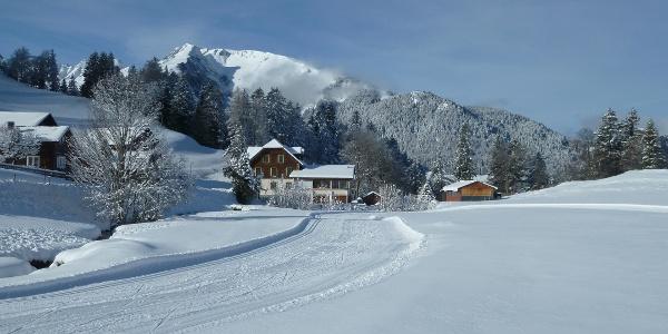Weisse Winterpracht in St. Margrethenberg Dorf