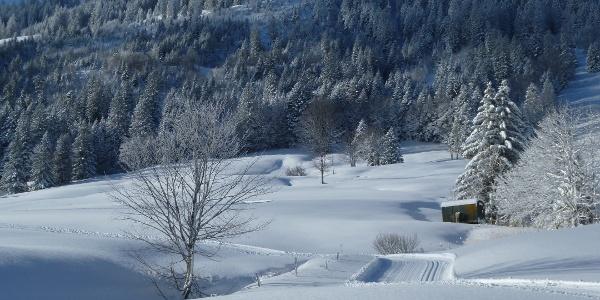 Verschneite St. Margrethenberg-Landschaft
