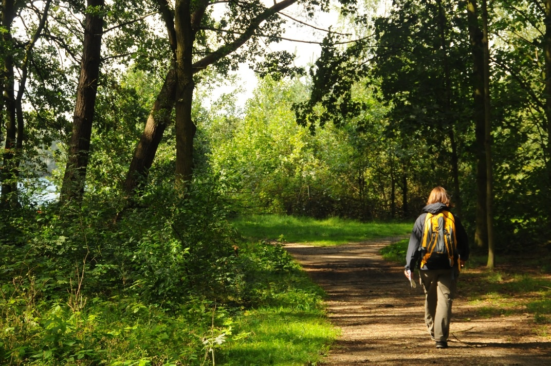 The Top Hiking Trails in the Netherlands
