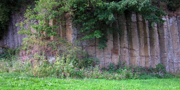 Geotop Basaltwand