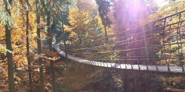 Hängebrücke am Rothaarsteig im Herbst