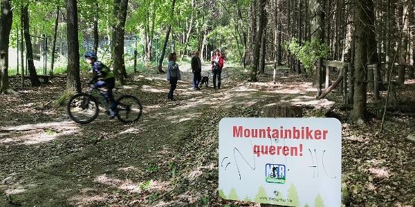 Achtung Biker: Der Trail kreutzt immer wieder Wanderwege. Die Punkte sind gut markiert