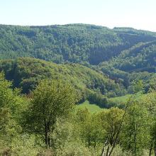 Landschaft Pur
