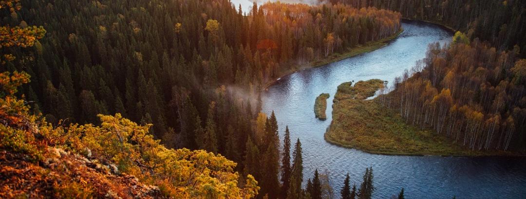 Herbst im Oulanka National Park