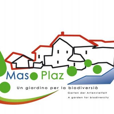 Logo Maso Plaz
