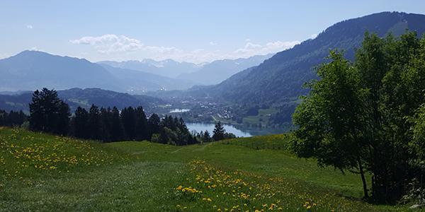Alpseeblick hinter der Siedelalpe