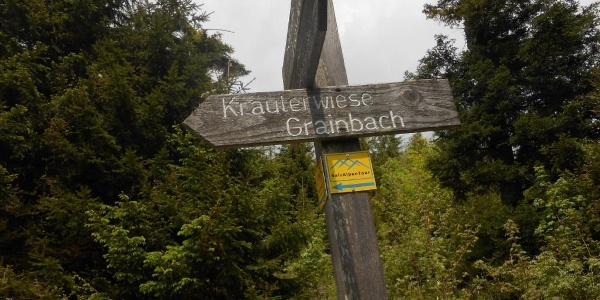 Wegweiser Kräuterwiese