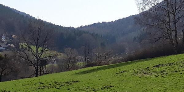 Bei Nothweiler