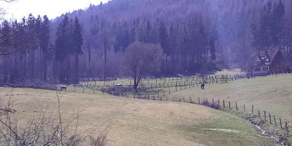 zwischen Nothweiler und Col du Schaufelshald