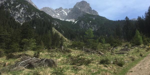 Ausblick Breithorn