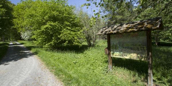 Schautafel im Arboretum Haslach