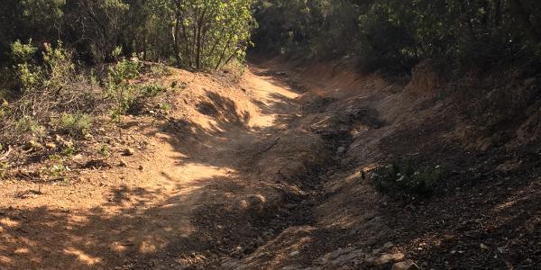 Trail Sira