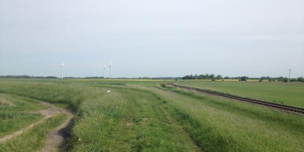 Kleinbahn im Kleiseerkoog