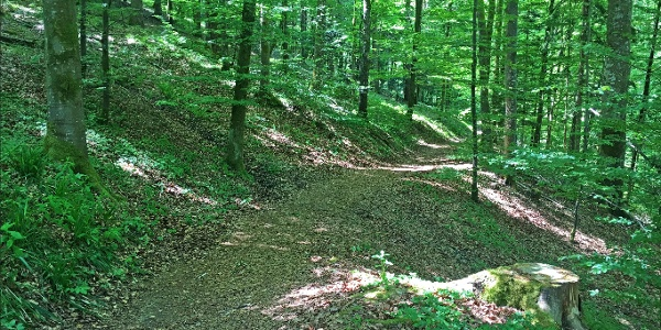 Klösterle Schleife Wanderweg