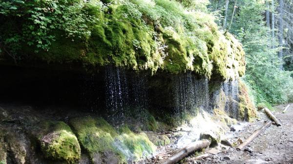 Ein Wasserfall in der Wutachschlucht
