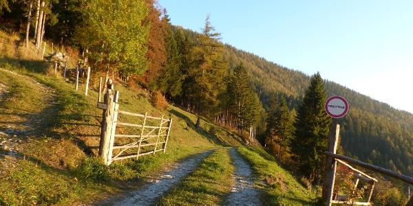 Weg in Richtung Patscha-Sattel