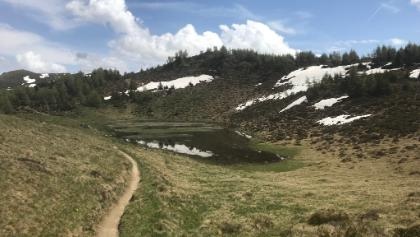 Panorama Trail OBA