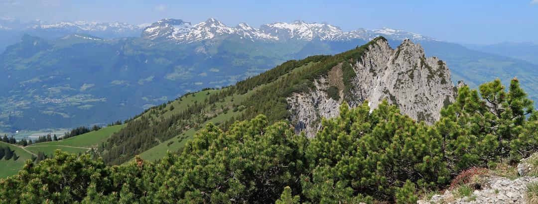 wunderbare Aussicht vom Helwangspitz über den Alpspitz zur Alvierkette und dem Alpstein.